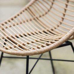 Lot de deux chaises de jardin