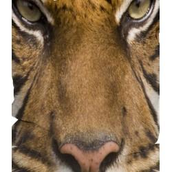 Pouf poire tigre